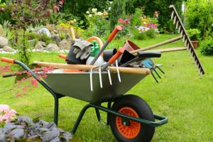 Tonte pelouse : entretien jardin à Saint-Nazaire, La Baule, Pornichet